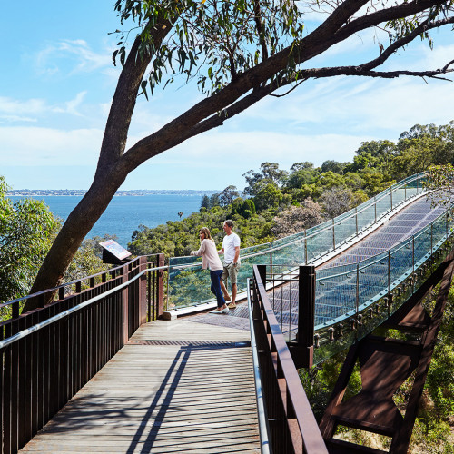 Kings Park TourismWA 111839 Discover