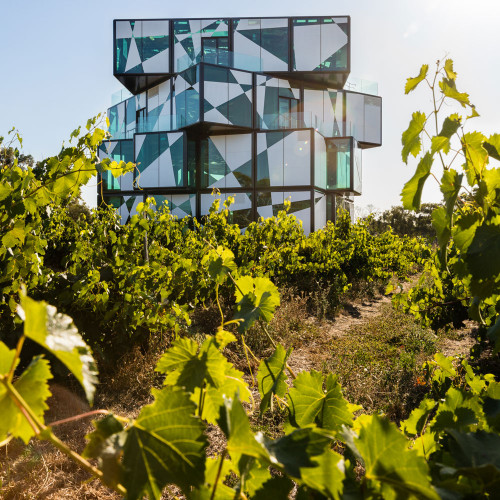 The dArenberg Cube Savour South Australia Immerse