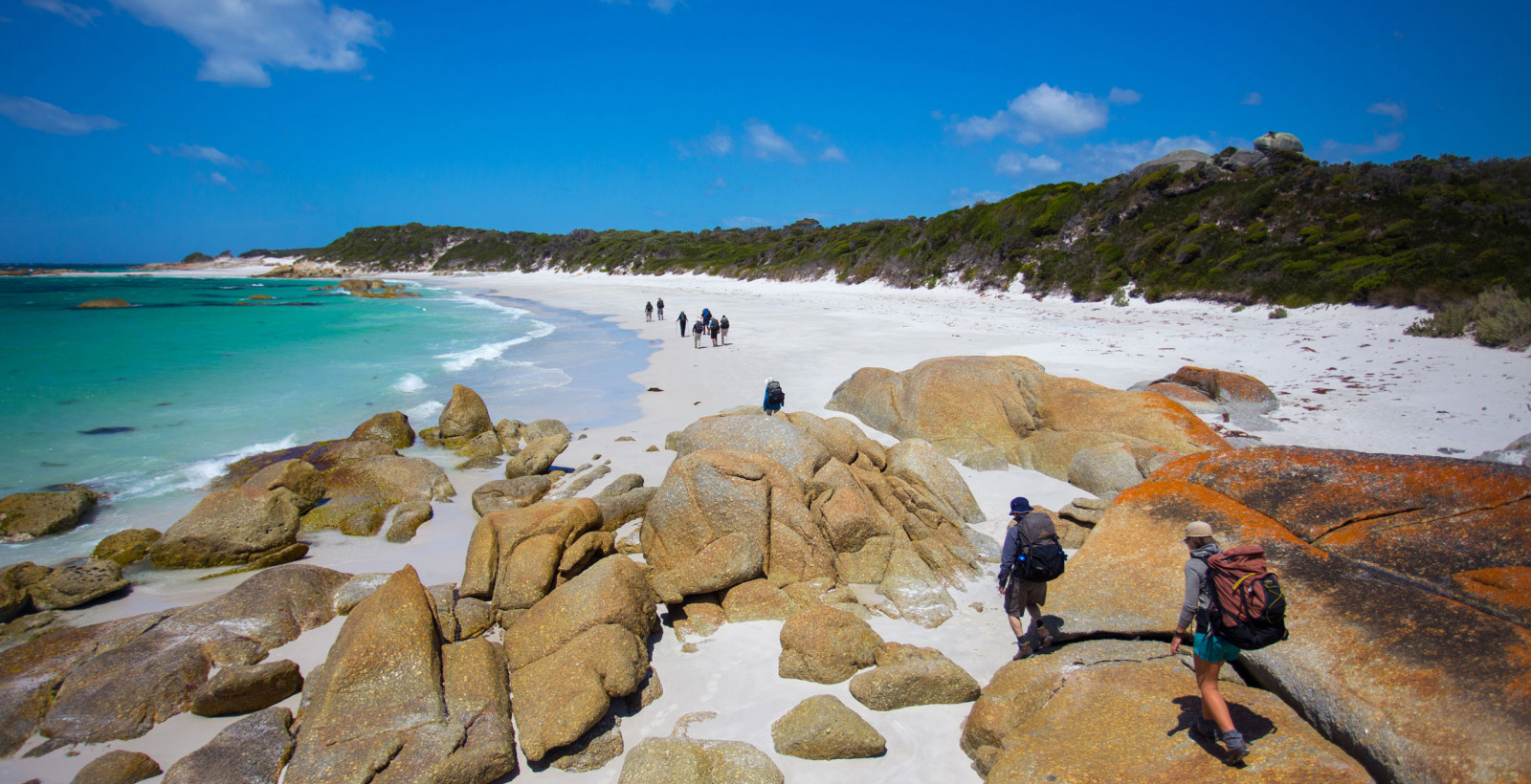 Bay of Fires Tastes of Tasmania hero banner