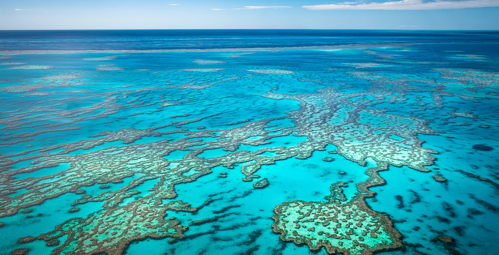 Great Barrier Reef shutterstock 1158634060