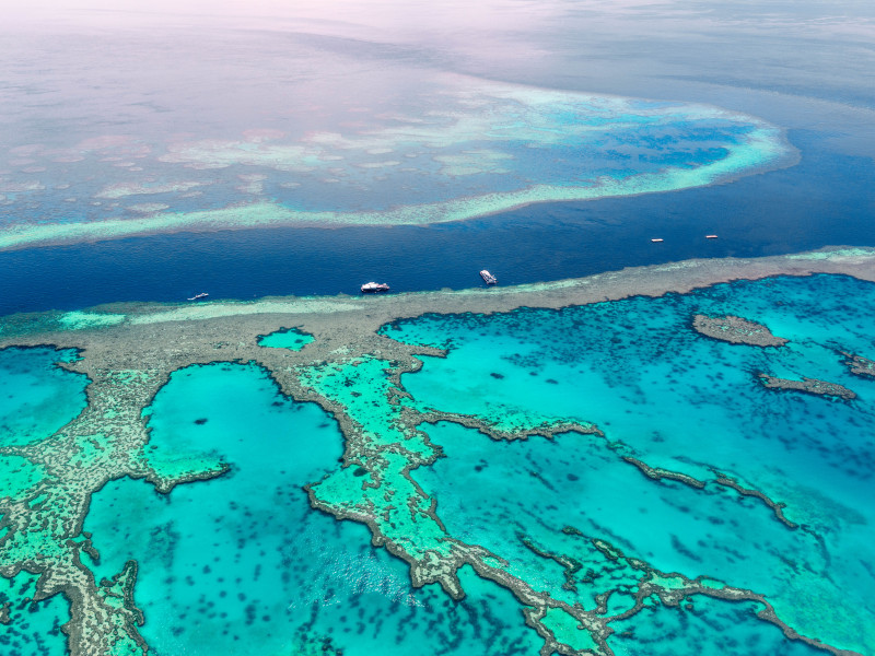 Great Barrier Reef shutterstock 626851424