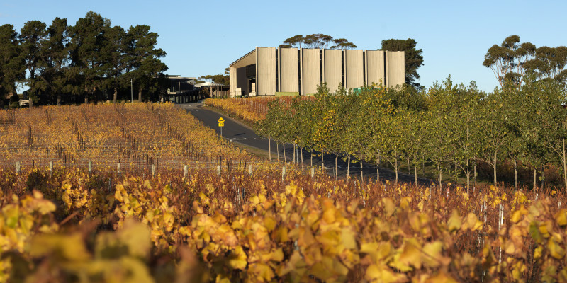 Image courtesy of Moorilla Winery Tourism